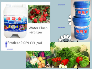 Seaweed Extract Microbial Wter Soluble Fertilizer.