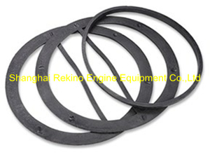 N.160.LQQDP Oil cooler gasket Ningdong engine parts for N160 N6160 N8160
