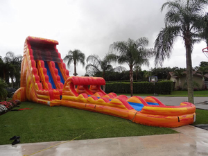 New Giant Inflatable Hippo Slide Water Slide for Seaside