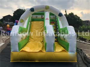 RB6105(5x2.5x3m) Inflatables Animal theme double slide