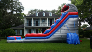 Inflatable Hippo Slide Giant Slider Inflatable Longest Slide