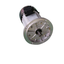 Flange Type Motor for Hoist Lifting