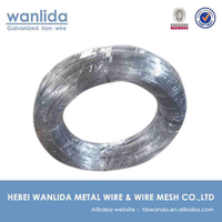 SGS carbon steel wire q195 factory