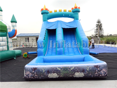 RB7011 (6x3.2x4m) Inflatable Small Sea World Theme Water Slide For Sale