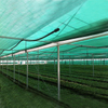 HDPE Flat Green color Shade net 80gsm