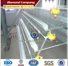 A-shape 3tiers Layer Chicken Cage for Africa Farmer