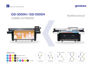 GD-5000H UV Hybrid printer with Ricoh print head