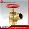 "1.5"" or 2.5"" Brass Fire Hydrant"