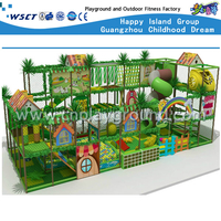 Animal Indoor Playground Adventure Play Equipment (H14-0804)