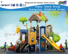 House Type Outdoor Playsets Park Equipment HF-16203