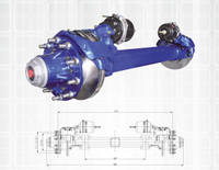 Disc Brake Axle Series 11-13T