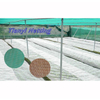 HDPE 70gsm green color or other color Anti Insect Net