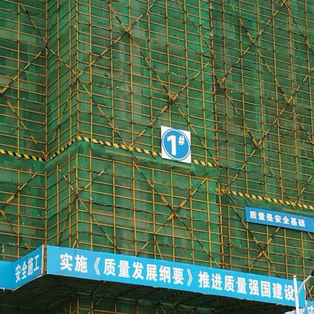 HDPE 220gsm green color scaffold net