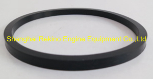 Cummins ISDE ISBE water pump seal ring 3906698