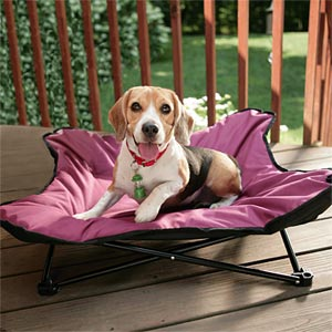 Metal Pet Bed Bone Lounger Dog Camping Bed