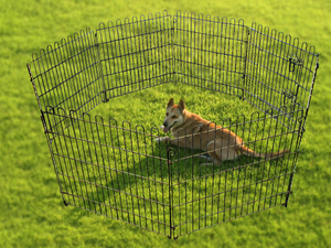 Pet Wire Playpen with Six Panels