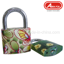 Padlock Steel, Padlock Iron Body Colour Design Padlock (804)