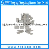 Hot Sale Concrete Floor Grinding Segment