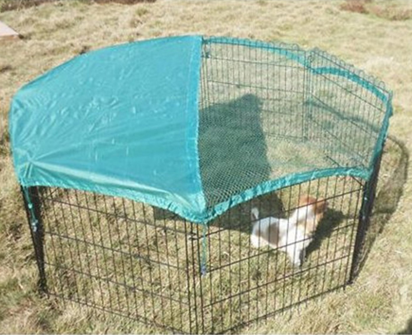 Dog Enclosure Pet Metal Playpen with Cover