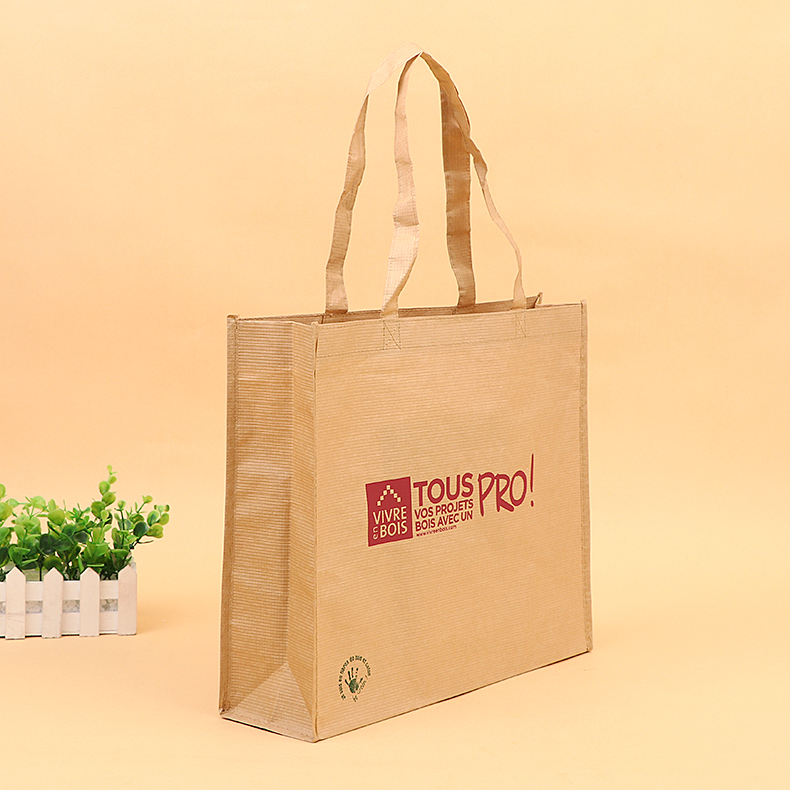 2019 Latest Fashion Eco-Friendly Extra Strong Takeaway Shopper Paper Bag