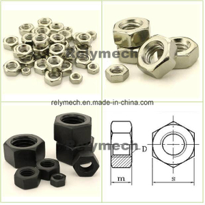 Stainless Steel/Carbon Steel/Nylon/PC Transparent/Brass Hex Nut/Lock Nut/Hex Lock Nut