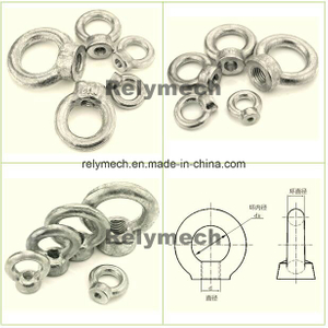 Stainless Steel/Forged Galvanized Eyenut/Eye Nut
