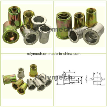 Flat Head Stainless Steel/Carbon Steel Rivet Nut