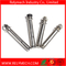 Stainless Steel Expansion Screw/ Expansion Bolt/ Expansion Anchor Bolt/ Sleeve Anchor Bolt
