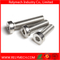Hex Bolt Hex Socket Bolt Carriage Bolt with Pan Head