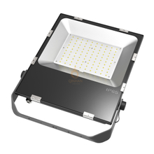 100W TG Series LED Flood Light