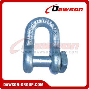 Forged Trawling Dee Shackle with Square Head Oversize Pin