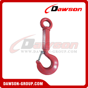 DS552 Alloy Shank Hook with Eye Screw