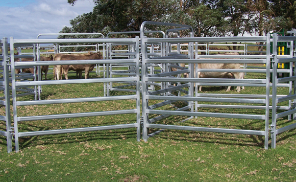 Hot dipped galvanized 6 rails Farm fence Cattle Panel ...