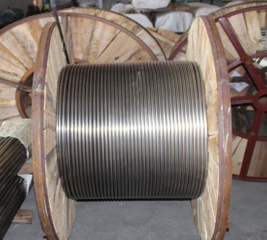 AISI 316 Stainless Steel Coiled Tubing