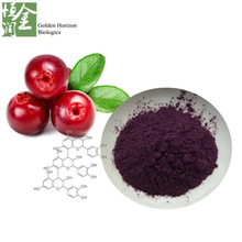 UTI Treatment Anthocyanidin Cranberry Extract