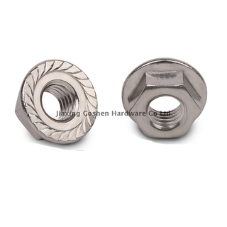 Stainless steel flange nut ISO4161