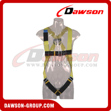 DS5101 Safety Harness EN361