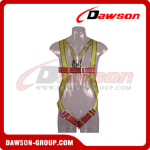 DS5103 Safety Harness EN361