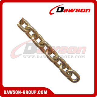 G70 Transport Chain NACM1990 Standard