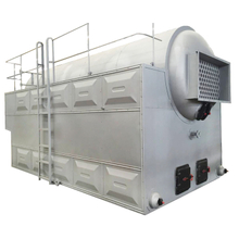 Reasonable Prices Passed ASME Test Low PressureCoal Fired Hot Water Boiler