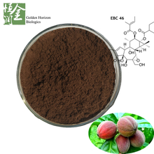 Factory Supply Bulky Anti Cancer Fruit Blushwood Berry Extract Powder for Health Care Products