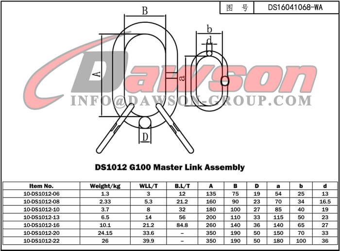 DS1012 G100 Master Link Assembly - Dawson Group Ltd. - China Manufacturer Supplier