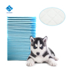 Floor Protection Dog Puppy Housebreaking Training Pads Disposable Pads Wiht High Quality