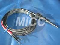 Thermocouple WRNT-303