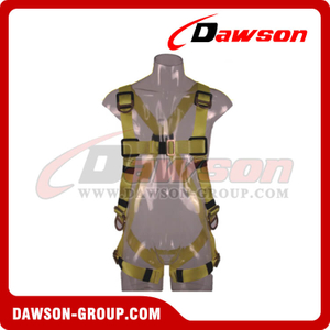 DS5137 Safety Harness EN361