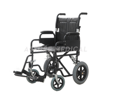 YJ-008B Steel Transit Wheelchair