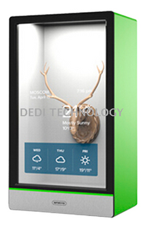 Transparent LCD display cabinet