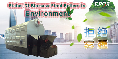 "Why choose ""biomass"" as boiler fuel?"