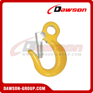 DS114 Alloy Eye Hook with Latch