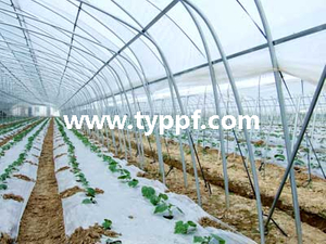 Film penutup Multi Layer Greenhouse